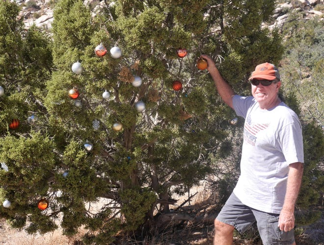 It's not a Christmas tree, but the Juniper bush does a decent job passing for one in Christmas Tree Pass.