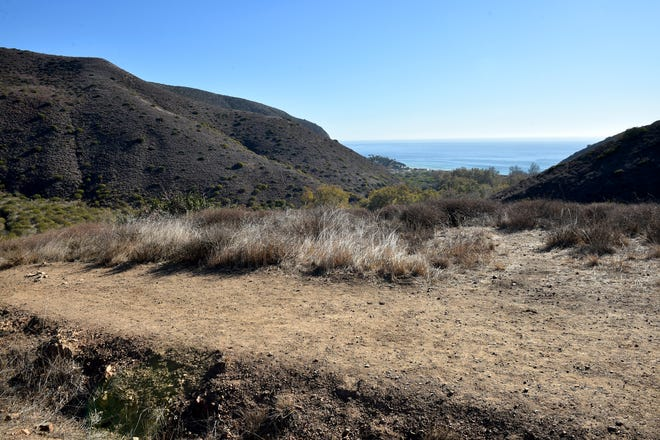 Dry brush lines the trails overlooking Sycamore Canyon in Point Mugu State Park on Friday, Dec. 18, 2020.