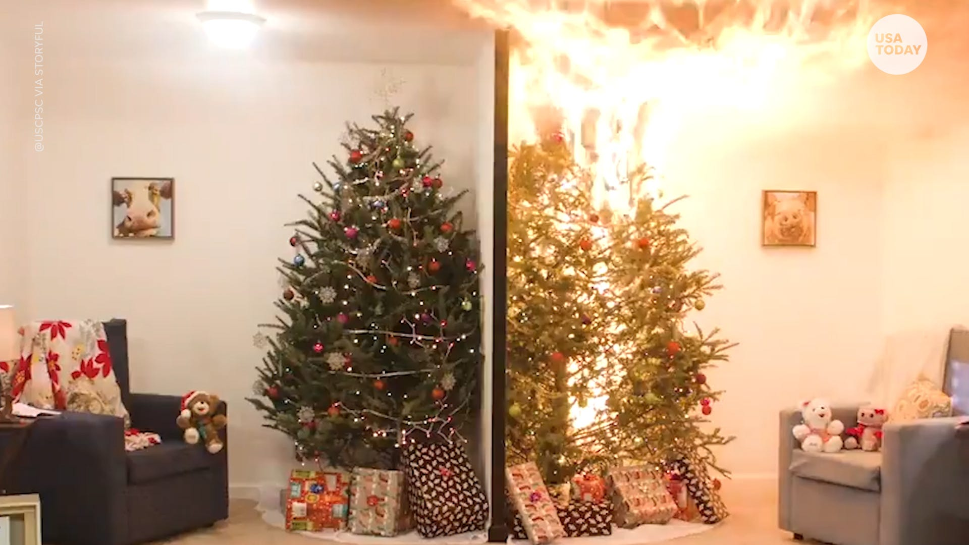 US Consumer Product Safety Commission PSA on dangers of not watering your Christmas tree