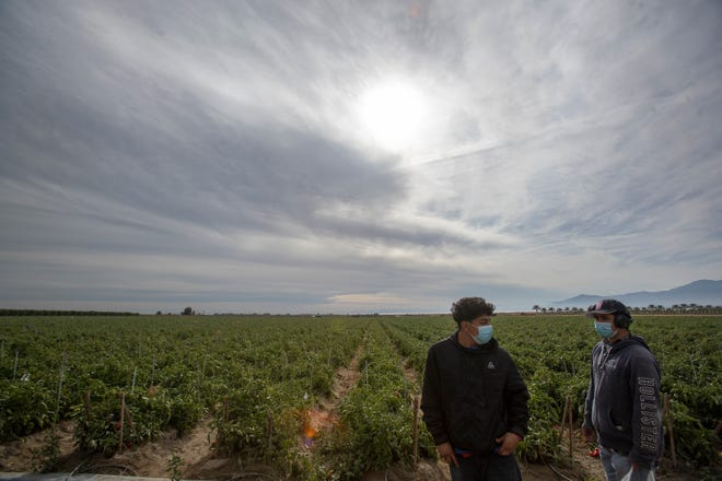 Farmworkers listen to volunteers talk about the COVID-19 vaccine in California on Dec. 17.
