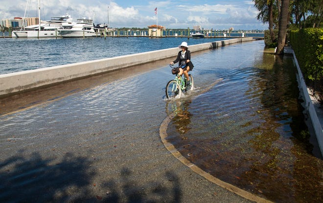 Water from the Intracoastal Waterway floods Lake Trail at Sunset Avenue in Palm Beach at high tide. The flooding is the result of the yearly King Tides.