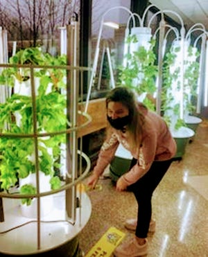 Scio students tending to the grow towers.