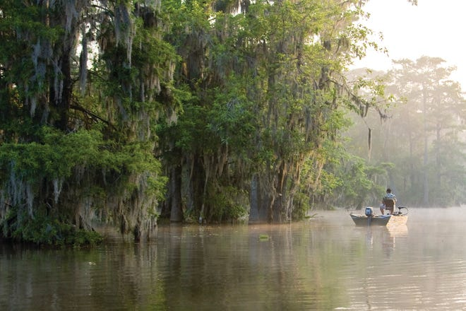 A task force commissioned by Gov. John Bel Edwards will seek ways to preserve and upgrade the waterways in the Atchafalaya Basin.