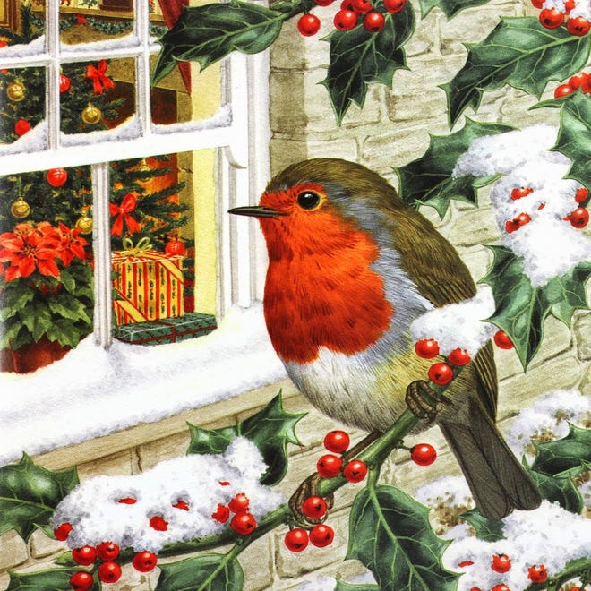 Robins have not always worn orange-red breasts. Folklore relates that an act of compassion at Christ's birth earned the coloration. This has tied robins to Christmastime.