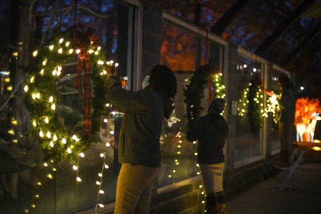 Hattiesburg Zoo Christmas Lights 2021 Lights Of The Wild Hattiesburg Zoo 2020