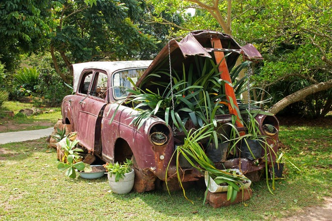An old car repurposed as a planter.