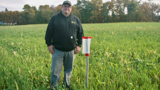 Matt Brugger, the Upper Fox–Wolf River farms network project manager, checks out the cover crop demo plot on the Boerst farm near Manawa.