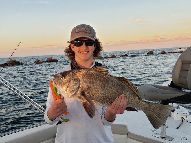 Jack Glazier, of Ormond Beach, caught this 12-pound black drum while fishing the Ponce Inlet Jetty.