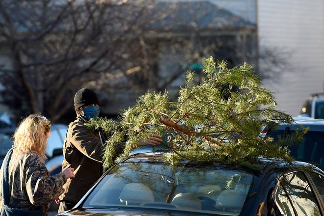 Parker Vivier and Marsden Olsen, both of Richmond, prepare to tie their tree to their car after purchasing from Frank Pichel's tree lot Sunday in Richmond.