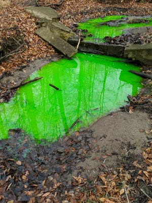 A tributary of the Rouge River in Beverly Hills turned bright green after officials said they conducted tests for sewage leaks.