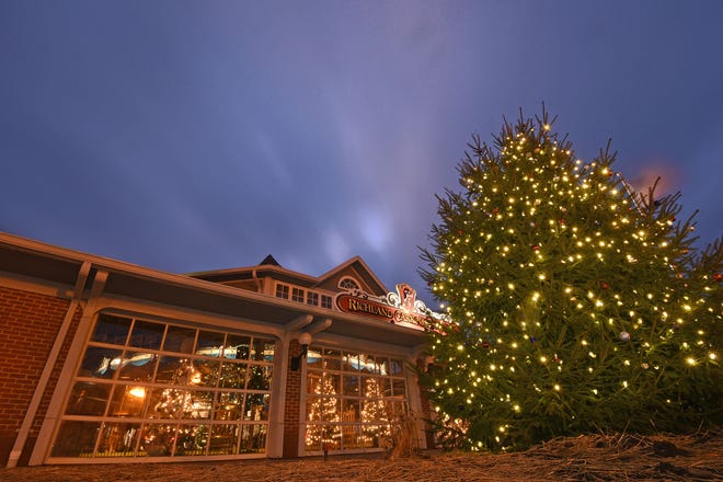 Mansfield's Christmas tree in front of the Richland Carrousel Park shines bright for the Christmas season.