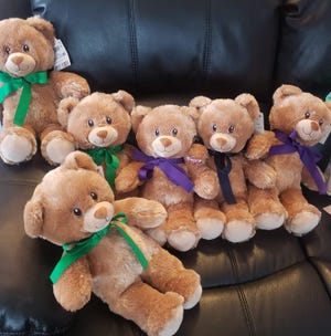 A Menomonee Falls resident started  a nonprofit, The Bear Hug Project, which buys teddy bears from the Build-A-Bear Workshop for children who are hospitalized.  Since its inception in 2011, more than 3,000 bears have been donated.
