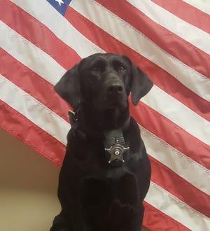 Cara of the Staunton City Sheriff's Office.