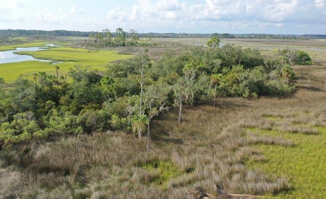 The Intracoastal Waterway islands and marsh north of Butler Boulevard are being bought for conservation by the North Florida Land Trust.