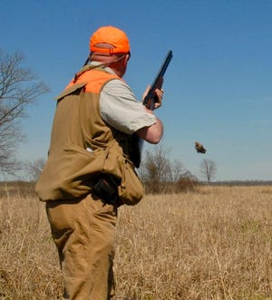 In a less than memorable year, the mixture of family, old shotguns and a few Christmas quail can bring a smile and lifelong memory, even in the middle of a pandemic.