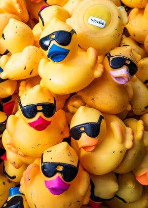 The second annual Duck Derby will be held on Feb. 13 in Ocala's Tuscawilla Park.