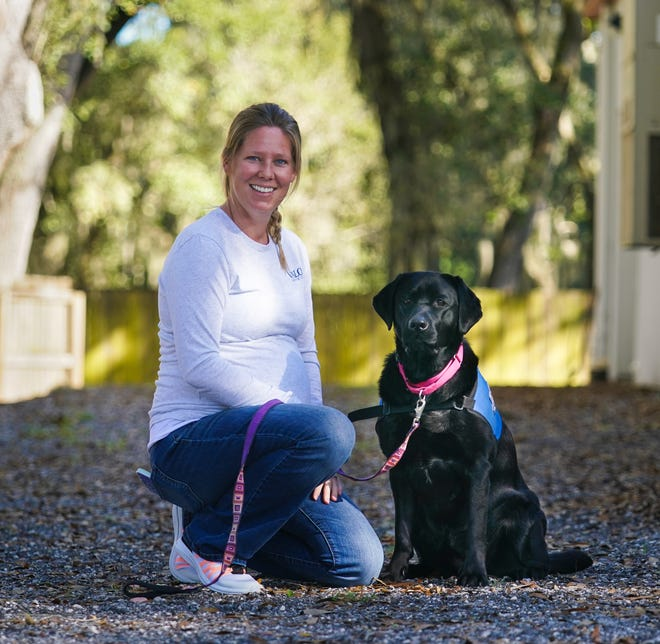Carol Lansford with Frannie, a 20-month-old Labrador in training, at Valor Service Dogs in Tampa.