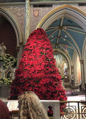 The poinsettia tree at the Cathedral of St. John the Baptist is a local Christmas tradition.