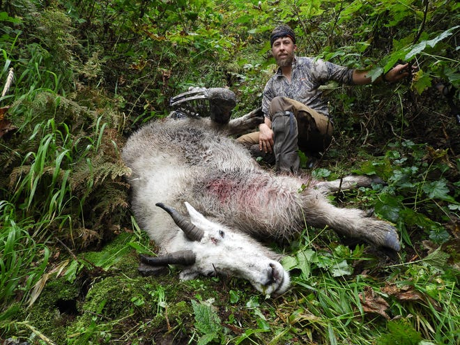 Council Grove native Kaleb Baird, 33, stands above his world-record mountain goat he harvested on Sept. 11 in southeast Alaska.