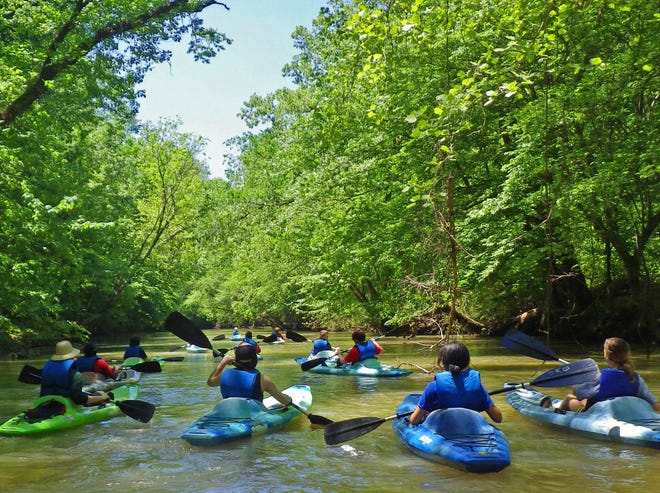 Paddlers are shown on Big Wills Creek near Attalla, a popular site for both paddlers and anglers. Opponents of a proposed rendering plant in Gadsden say wastewater discharge from the plant would get into the creek, but the Gadsden Water Works and Sewer Board disputes that.