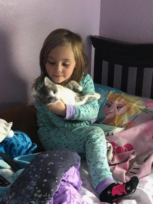 Christine Evans' child holds the family's new kitten, Cheerio, they adopted from Animal Friends Alliance in Fort Collins.