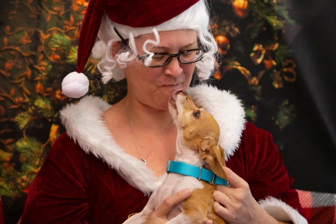 Nike kisses  Mrs. Claus, played by Rachel McGowen, during a visit, Friday, Dec. 25, 2020, at the Cape Coral Animal Shelter. Santa Claus and Mrs. Claus provided Christmas day treats and presents to all the dogs and cats waiting to find their forever homes at the animal shelter.