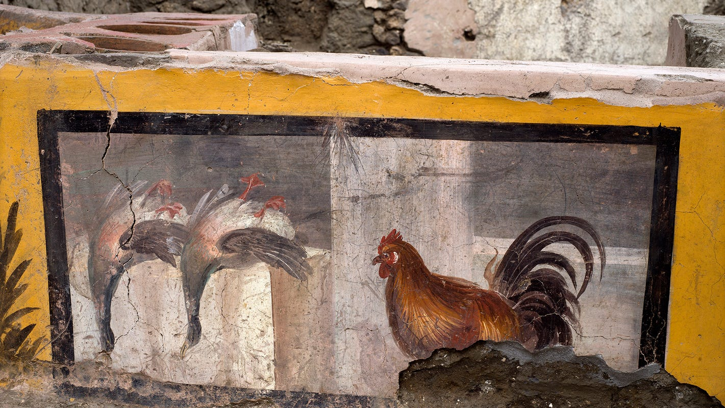 Ancient fast food eatery excavated in Pompeii: 'We know what they were eating that day' – USA TODAY