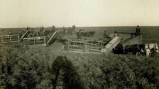 From soybeans to wheat, early farming has changed over the centuries across Kansas
