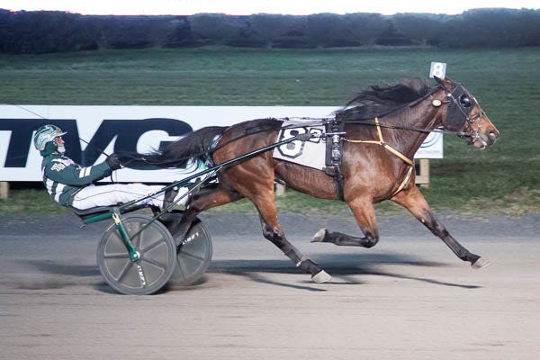 Warrior One and driver Yannick Gingras are in front and drawing away at the wire in the trotting feature at The Meadowlands Saturday, Dec. 26, 2020. (Credit: Lisa Photo)