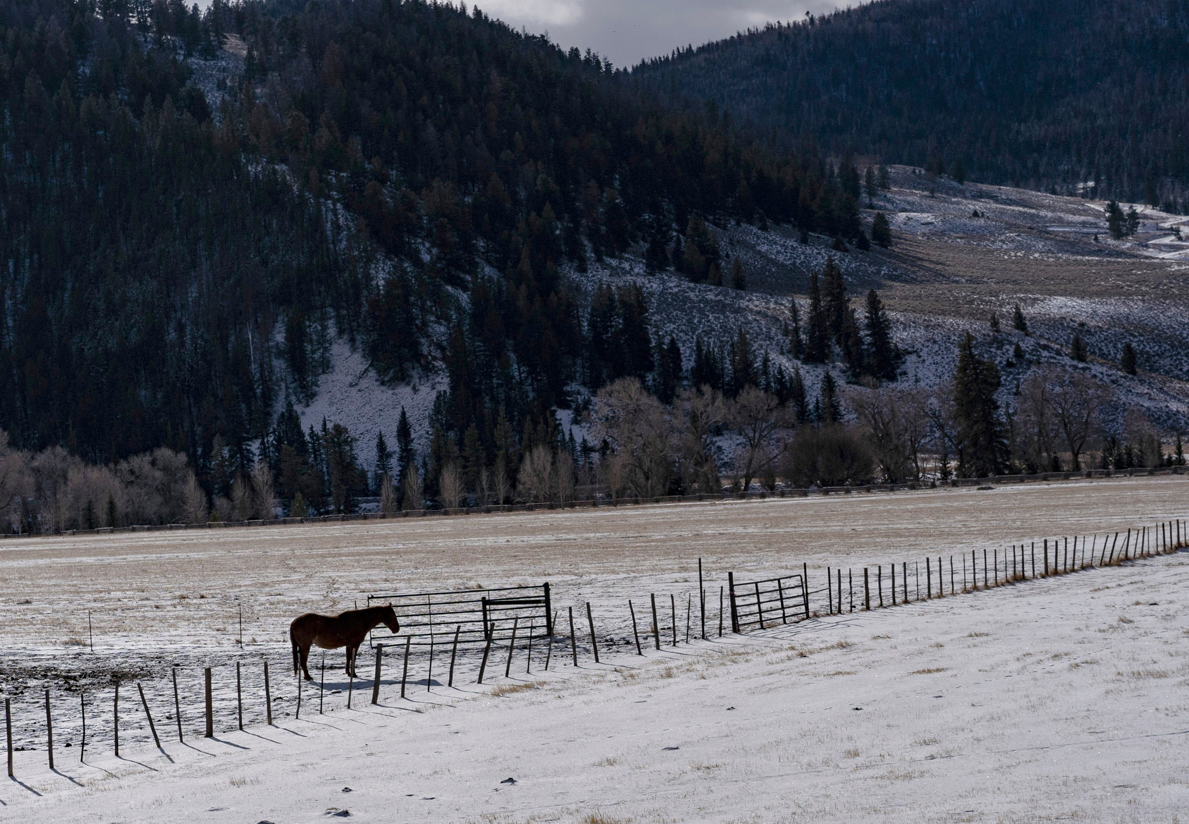 Snow blankets the landscape near Taylor Park Reservoir in the Gunnison River Basin in Colorado.