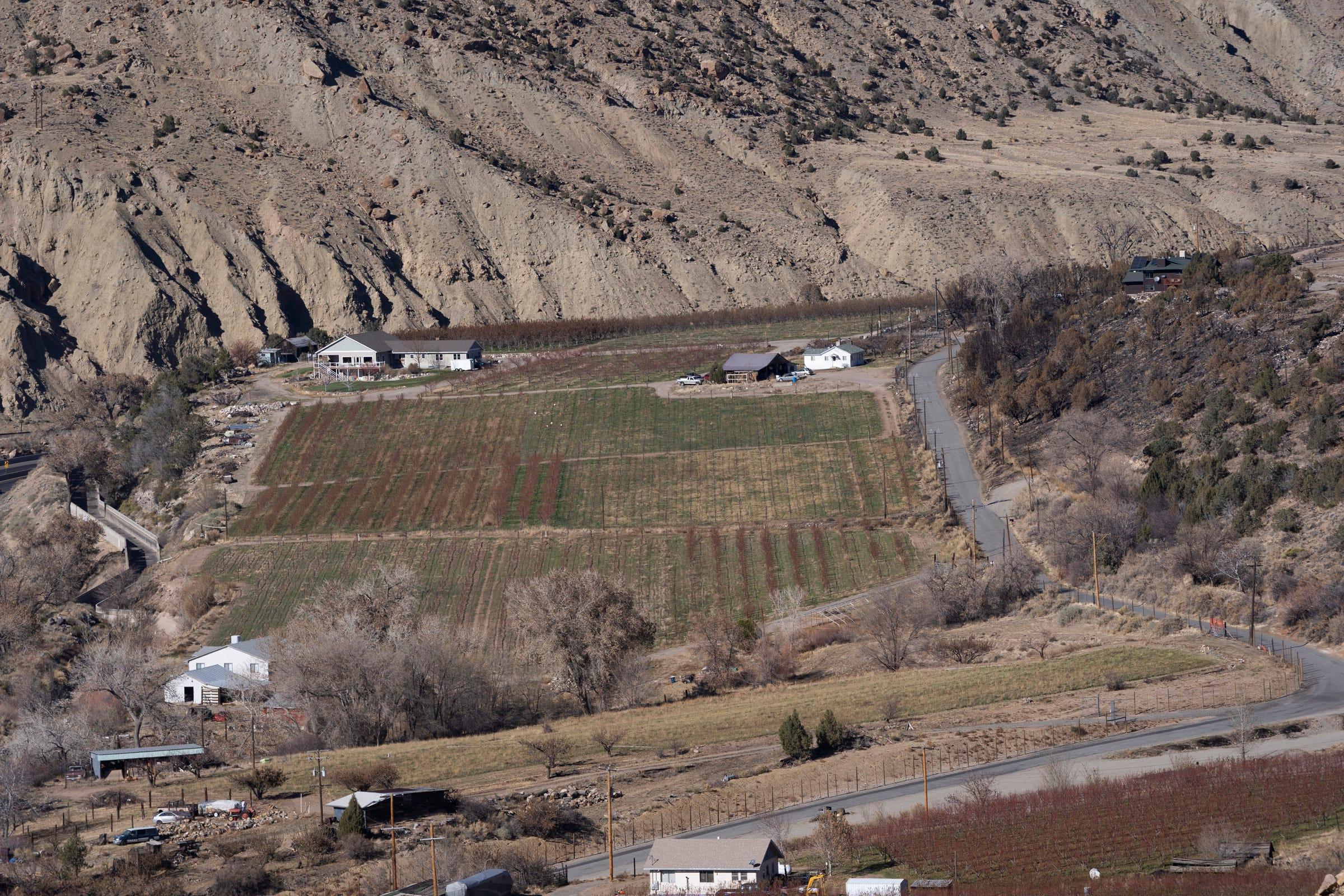 The Colorado River flows between farmland and a highway near Palisade, Colorado.