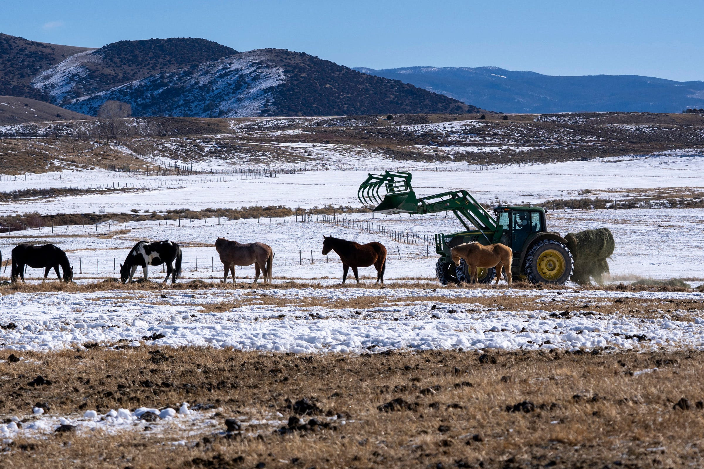 Paul Bruchez uses a tractor to take hay to horses, which he cares for under an agreement with another ranch near Kremmling, Colorado. In the background stand mountains where months earlier a fire had billowed smoke.
