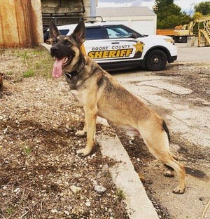 K-9 Officer Loki of the Boone County Sheriff's Office in Illinois was killed Sunday in the line of duty.