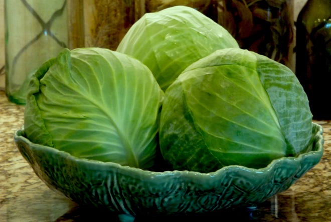 Green cabbage heads represent blessings and wealth, good luck and prosperity, while serving the rounded heads of the cabbages on New Year's Day represent the past year coming full circle.