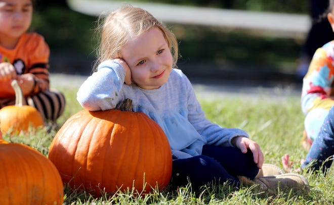 Gardening is a healthy, educational and fun activity, and growing pumpkins with kids or grandkids is a great way to connect with them.