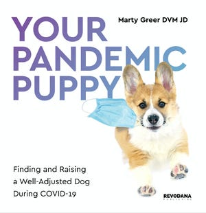 "Lomira veterinarian Dr. Marty Greer has authored a new book: ""Your Pandemic Puppy: Finding and Raising a Well-Adjusted Dog During COVID-19."""