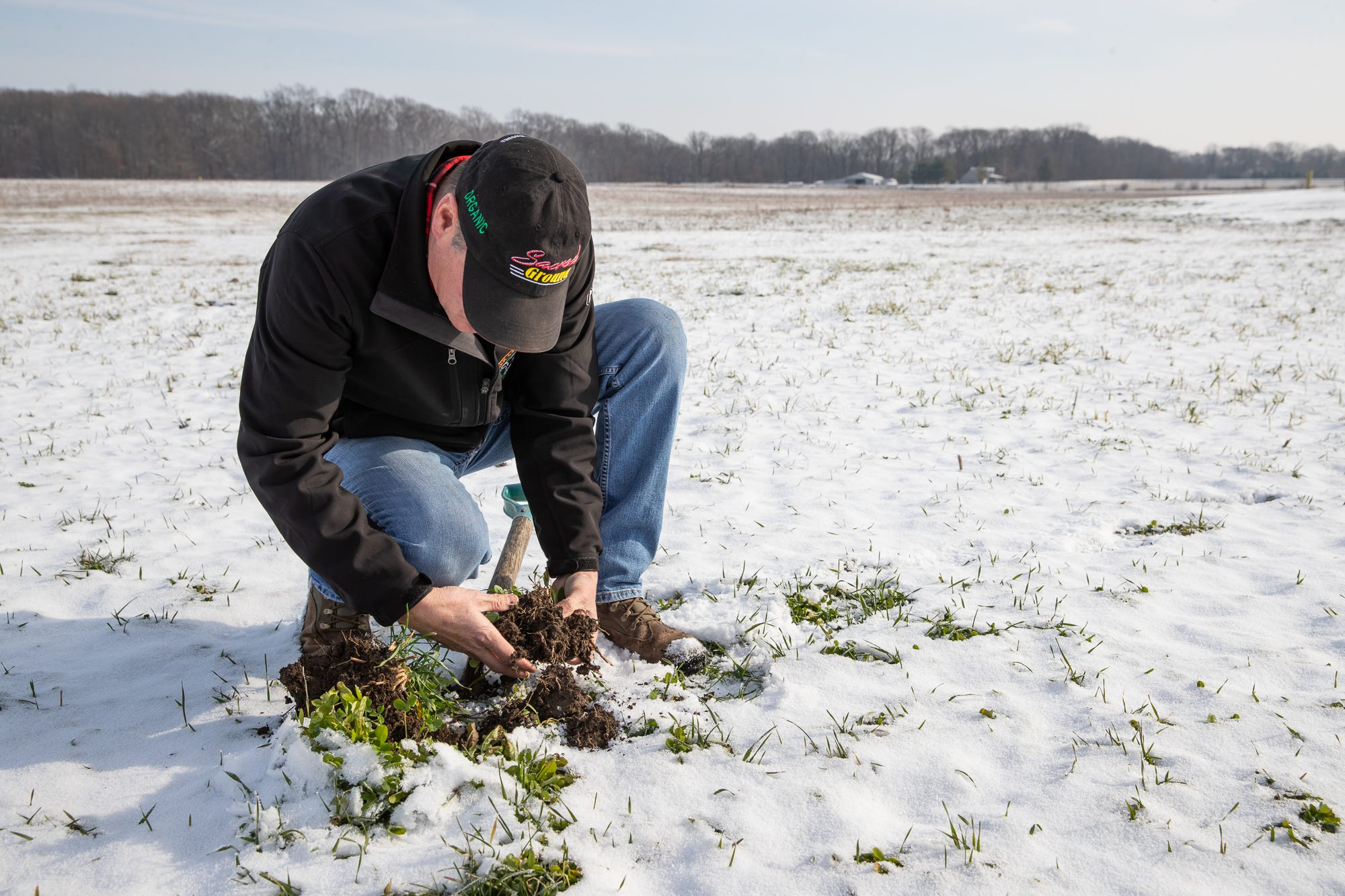 This farmer is saving $800,000 annually by taking away tilling, chemicals