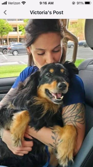 Duke, shown here with his owner Victoria Williamson of Ohio 546 outside Lexington, is a therapy dog who went missing on Christmas Day evening. Anyone with information is asked to call 567-274-0095.