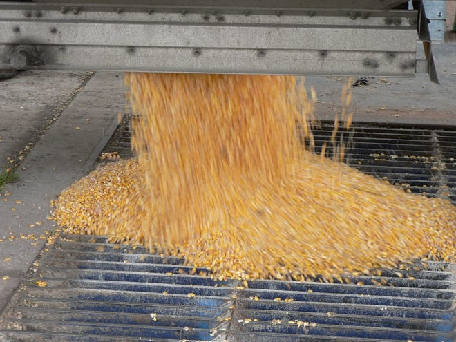 Given the tight supplies of corn and soybeans, most grain marketing analysts remain bullish about the grain markets going forward.