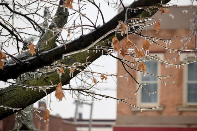 Ice forms on tree branches Tuesday in downtown Leavenworth. A storm produced snow, sleet and freezing rain.