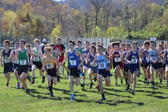 The wave of runners begins the class AA cross-country championship meet in Ona.