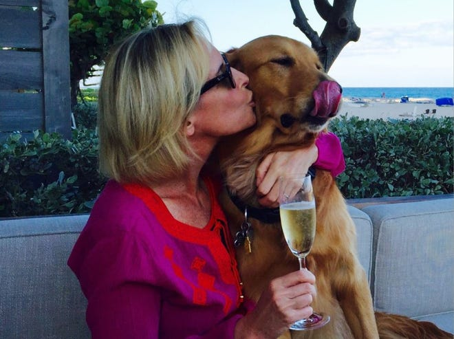 CNN's Randi Kaye and her dog Gatsby, who was rescued from a dog meat farm in South Korea. Kaye will broadcast live from Big Dog Ranch Rescue in Florida as part of CNN's New Year's Eve 2021 celebration.