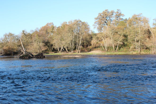 The section of the Mokelumne River below Camanche Dam opens to steelhead fishing on Jan. 1.
