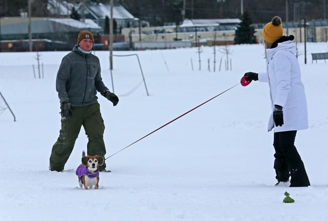 Josh and Justine Glenn of Wauwatosa walk Kaia, one of their two dogs, in the fresh snow at Hart Park on Dec. 30, 2020. Their second dog, Scooby, who was also with them, was exploring other areas of the park.