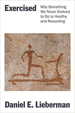 """""""Exercised: Why Something We Never Evolved to Do Is Healthy and Rewarding"""" (Pantheon, 442 pages, $29.95) by Daniel E. Lieberman"""