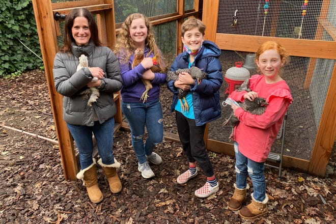 Members of the Abta family, from left, Allison, Violet, Eli, and Ariella hold hens in front of their backyard chicken run in Ross, Calif., on Dec. 15. The coronavirus pandemic is coming home to roost in America's backyards. Forced to hunker down at home, more people are setting up coops and raising their own chickens, which provide an earthy hobby, animal companionship and a steady supply of fresh eggs.