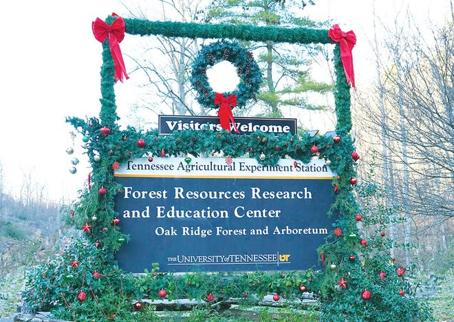 The UT Arboretum trails in Oak Ridge will be open on New Year's Day for hiking from 8 a.m. to dusk.