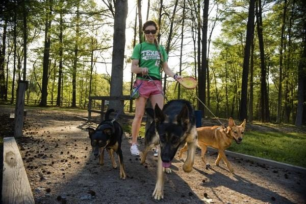 A woman walks dogs into Riverside Dog Park in this file photo from 2015.