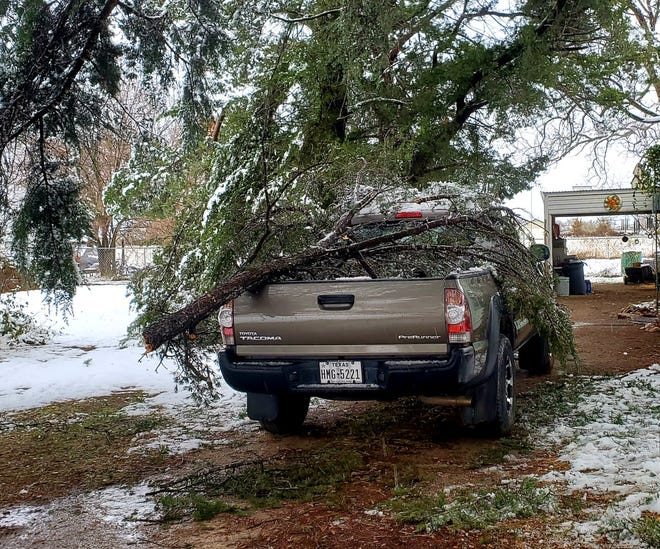 Early resident Debra Mathis provided this photo of her Toyota Tacoma pickup after she got up Friday morning and saw that three large tree branches had broken off from the weight of the snow and crashed onto her truck.