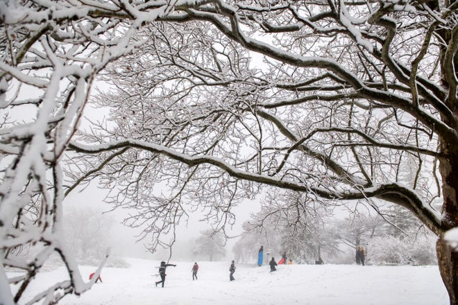 Families are framed by the snow-covered branches of a tree as they sled and throw snowballs Saturday, Jan. 2, 2021 at Donovan Park in Peoria.
